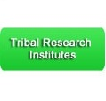 Tribal Websites
